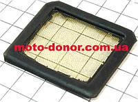 Фильтр масляный - сетка квадратная для мопеда DELTA