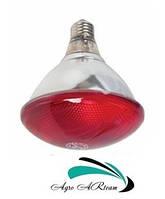 Лампа для обогрева инфракрасная 175 Вт красная (InterHeat), фото 1
