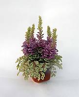 Цветы из бисера - вереск