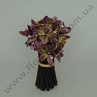 Композиция орхидей 22990