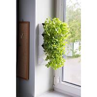Aquael Versa Garden Herbs модульная система для домашней грядки 40х15х10см