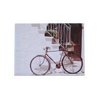 """Картина """"Велосипед"""" 30*40см"""