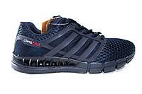Мужские кроссовки Adidas Сlimacool, синие, сетка, фото 1