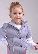 Е68 Детская жилетка  в расцветках, фото 2