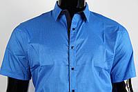 Рубашка мужская ANG 30850