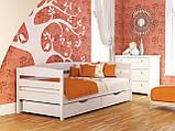 """Односпальне ліжко """"Нота плюс"""" з бука (щит, масив), фото 6"""