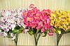 Ветка орхидеи (2 цвета по 20 шт)
