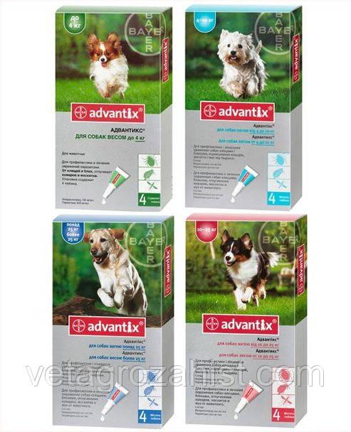 Капли Адвантикс для собак весом 10-25 кг, 2,5 мл 1 пипетка