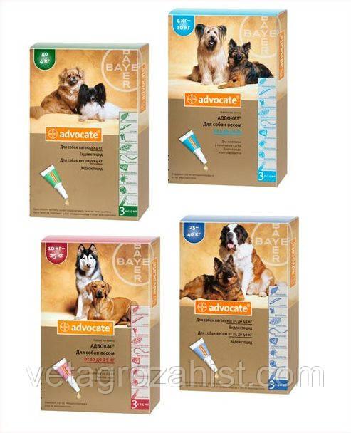 Капли Адвокат для собак весом 10-25 кг, 2,5 мл 1 пипетка