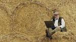 Украинские фермера смогут заработать только на слабой украинской валюте