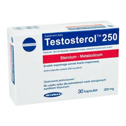 Бустер тестортерона Megabol Testosterol 250 - 30 капс, фото 2