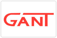 Автоматика для распашных ворот Gant