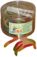 Жувасики черви