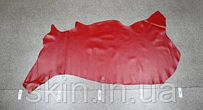 Натуральная кожа для кожгалантереи и обуви красная, толщина 1.5 мм, арт. СК 2003, фото 2