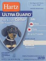 Ошейник Hartz (Хартц) UltraGuard для щенков от блох и клещей, 38 см белый