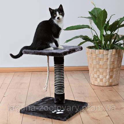 "*Когтеточилка ""ВИАНА"" для кошек и котят, 44см, антрацит, фото 2"