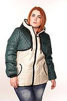 Демисезонные куртки женские больших размеров