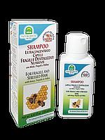 Шампунь с медом, прополисом и цветочной пыльцой для хрупких и слабых волос Natura House 250 мл 104600006