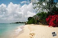 Постер глянцевый - Barbados / Барбадос, 91x60см