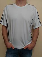 bf63c105e815 Футболки мужские Everlast в Украине. Сравнить цены, купить ...