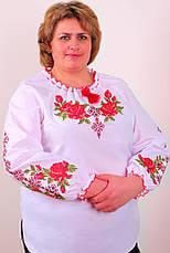 Жіноча вишиванка на великих жінок, фото 2