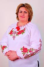Жіноча вишиванка на великих жінок, фото 3