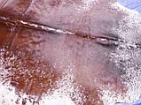 Аргентинські шкури корів в Одесі, красива шовковиста коров'яча шкіра, фото 5