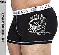 Big Sam спортивное белье 1355