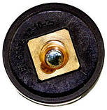 Гнездо ABI-IF 50-70 панельное байонетное , фото 2