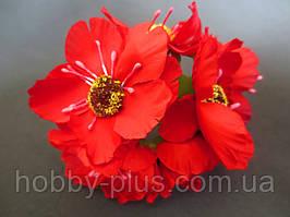 Декоративные цветы дикого мака d 4.5-5 см, 6 шт/уп, насыщенно-красного цвета