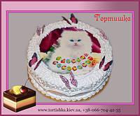 Детский тортик Кошка