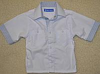 Классическая хлопковая рубашка с коротким рукавом. рост 98.104.110.116.122.128.134.140