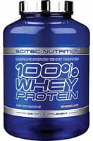 100% Whey Protein Scitec Nutrition, 2350 грамм
