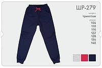 Трикотажные спортивные штаны для девочки.