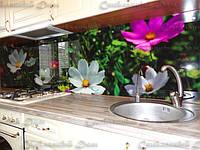 Стеклянный кухонный фартук купить в Черкассах