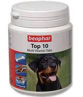 Пищевая добавка Beaphar Top 10 (Беафар Топ 10) для собак 180 шт.