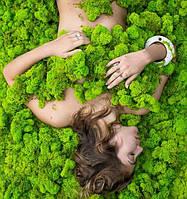 """Стабилизированный мох, прямые поставки от """"Artis Green"""""""