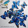 "Декоративные бабочки - ""Blue Butterfly"" - 12 шт."