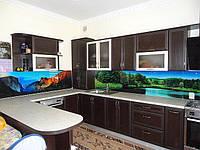 Стеклянный кухонный фартук купить в Мелитополе