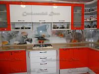 Стеклянный кухонный фартук с печатью купить в Бердянске
