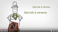 Изготовление рисованных видеороликов (дудл видео)