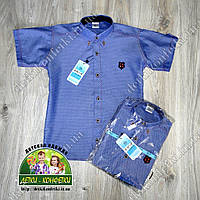 Рубашка с коротким рукавом для мальчика , фото 1