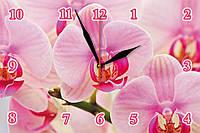 """Настенные часы на стекле  """"Розовая орхидея"""" кварцевые"""