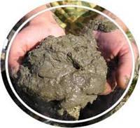 Удобрение органическое сапропель