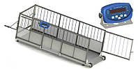 Весы для свиней 4BDU300Х-0615-Б Бюджет