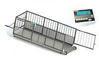 Весы для свиней 4BDU300Х-0615-С Стандарт