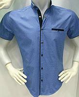 Нарядная мужская рубашка на пуговицах