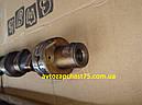 Вал распределительный Уаз, Газель двигатель 4216 инжектор (производитель Ульяновский моторный завод, Россия), фото 4