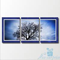 Модульная картина Ветви дерева из 3 фрагментов (82х37)