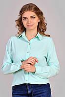 Блузка женская с пугавичками